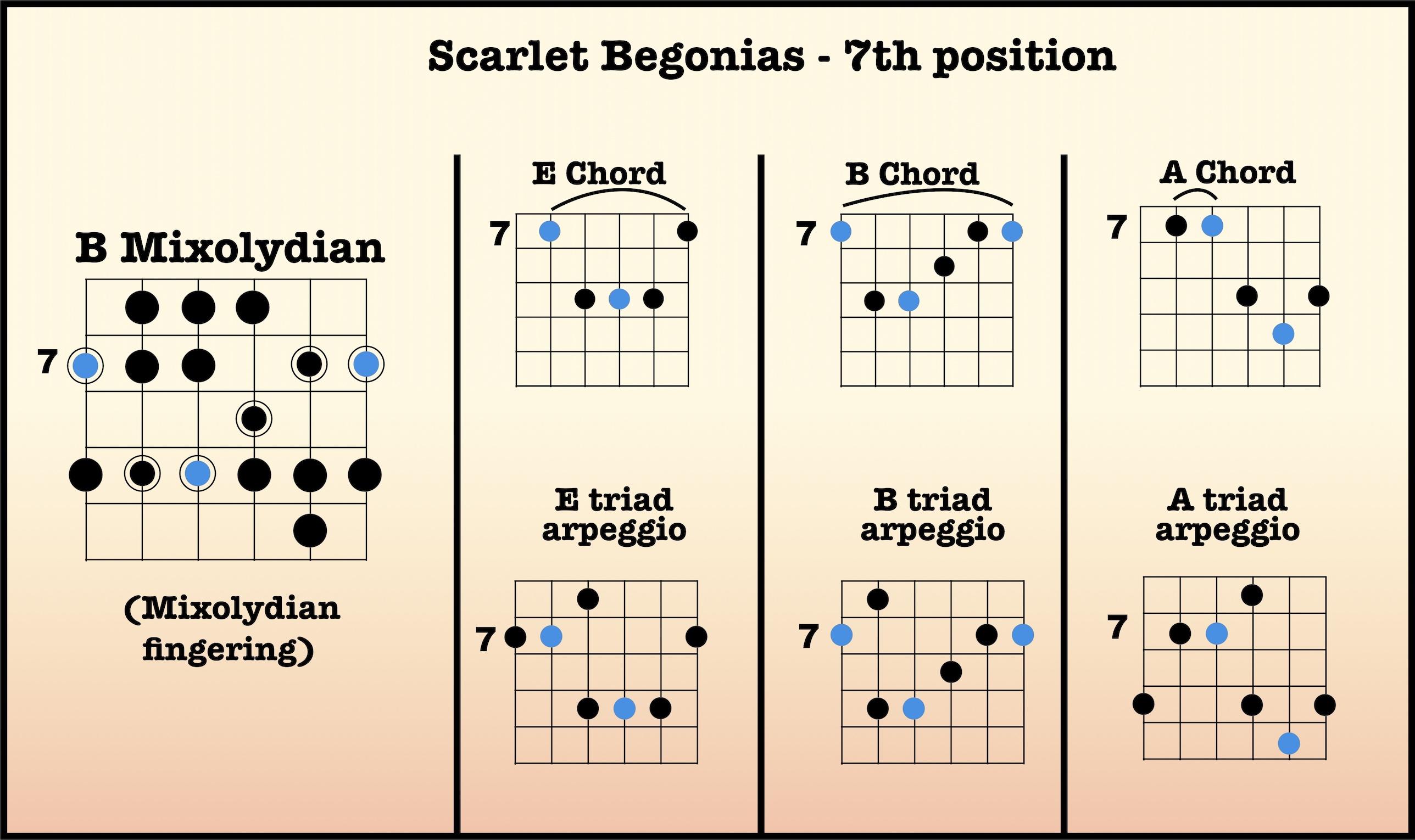 Scarlet Begonias   High Country Guitar